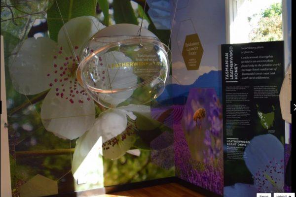 tasmanian-devil-scented-dome